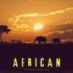 آشاملو آفریقایی