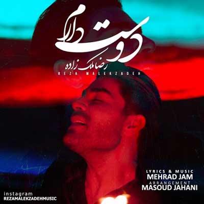 رضا ملک زاده دوست دارم