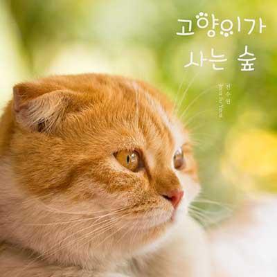 جئون سو یون جنگل گربه