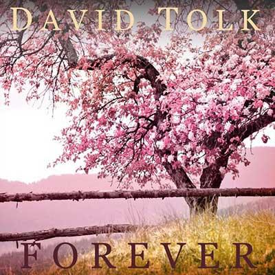 دیوید تولک همیشه
